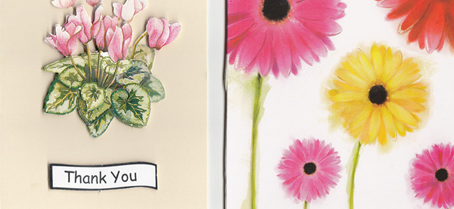 special-care-service-testimonial-cards-bromsgrove